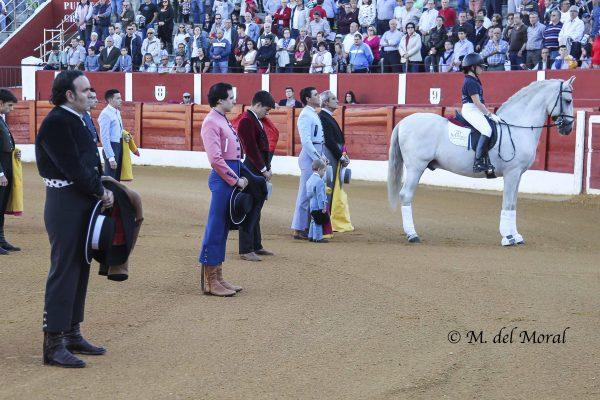 GALERÍA FOTOGRÁFICA DEL XV FESTIVAL TAURINO DE ALCÁZAR DE SAN JUAN