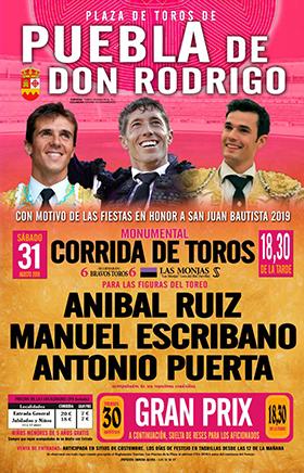 TOROS PUEBLA DE DON RODRIGO