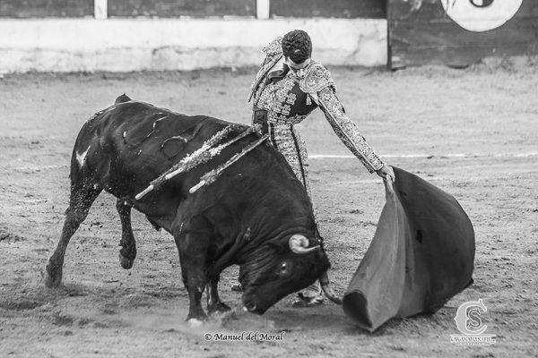 GALERÍA FOTOGRÁFICA DEL TRIUNFO DE FERNANDO TENDERO Y «CALITA» EN CASTELLAR DE SANTIAGO