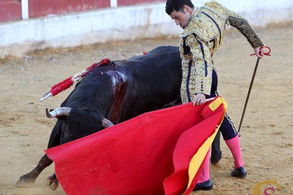 EL TOREO DE FERNANDO TENDERO Y «CALITA» TRIUNFAN EN CASTELLAR DE SANTIAGO