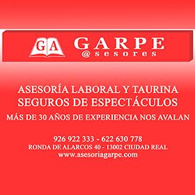 GARPE ASESORES